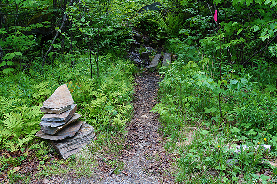 hike crocker mountain appalachian trail off caribou valley road, caribou pond road maine 4000 footers