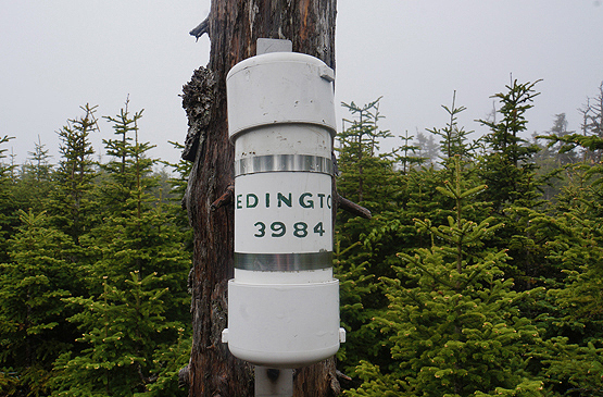 redington canister mount redington summit maine 4000 footers new england bushwhack